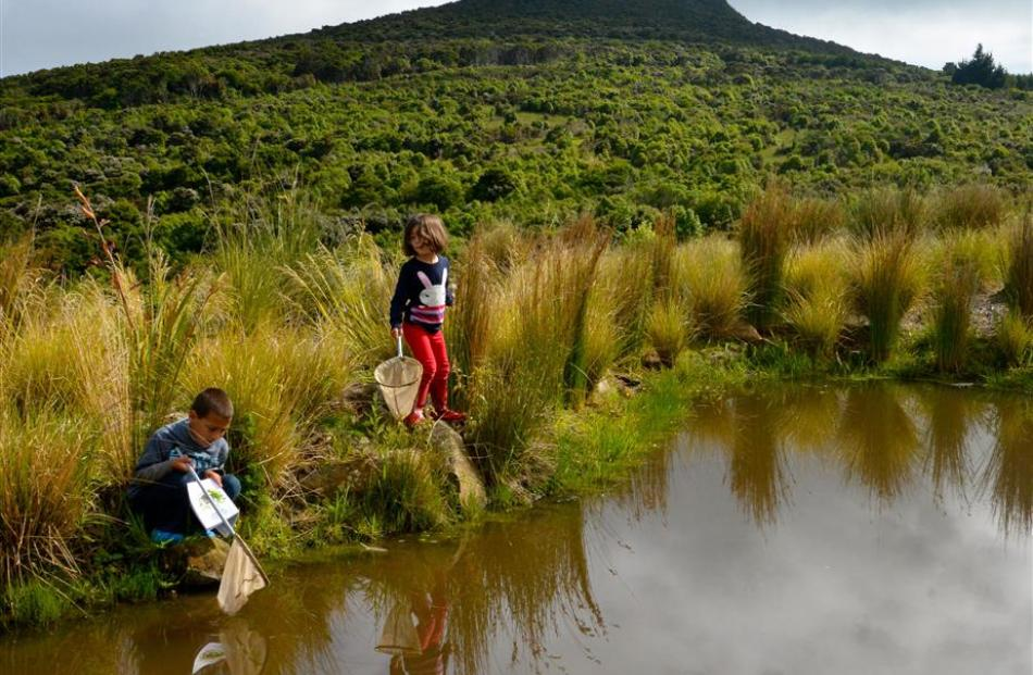 "Children ""pond-dipping"", discovering aquatic life. Photo: Angela Lyon"
