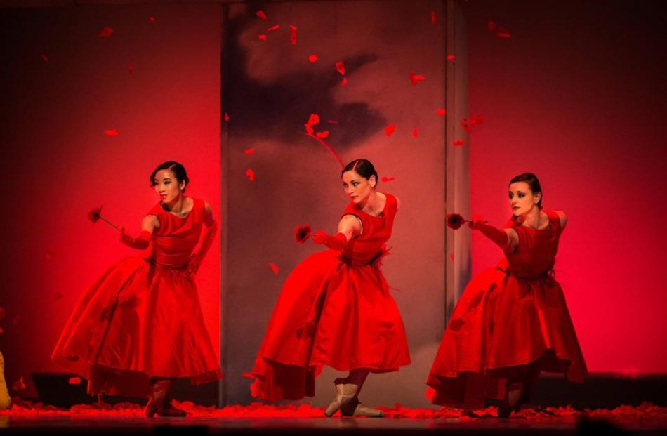Wizard of Oz a labour of love | Otago Daily Times Online News