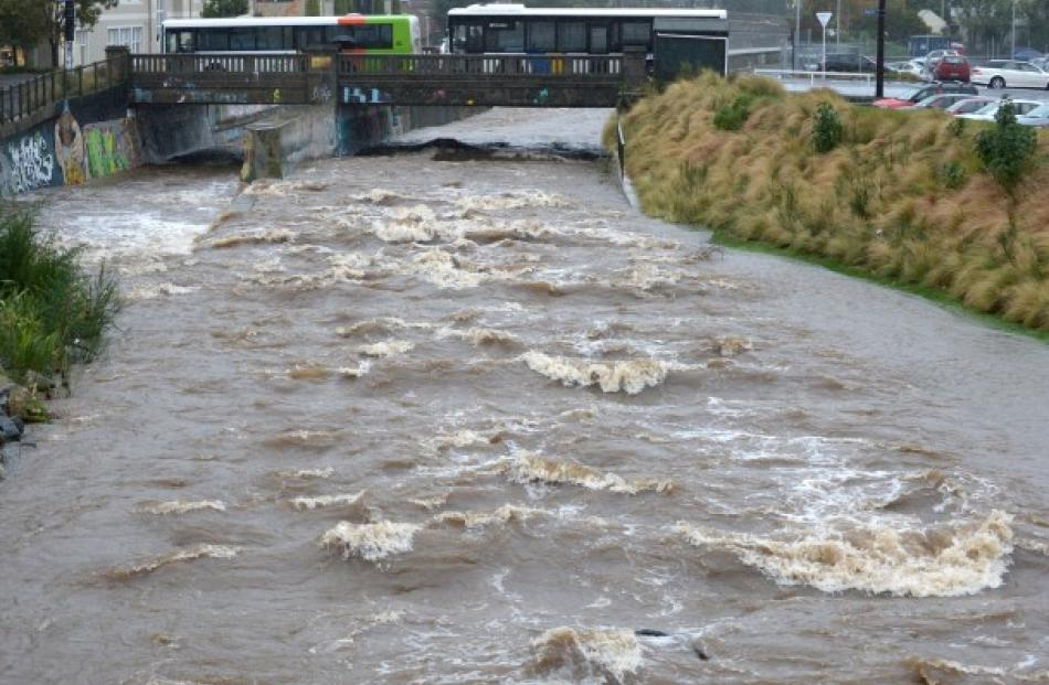 The Water of Leith between Clyde and Forth Sts. Photo: Gerard O'Brien