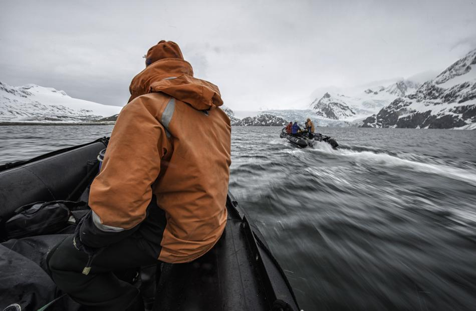 The team boats into King Haakon Bay in zodiacs. PHOTO: ROB STIMPSON