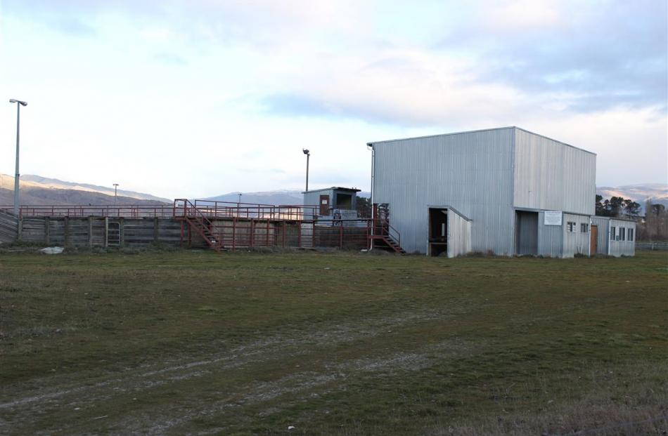 Cromwell's saleyards in McNulty Rd have been sold. Photo by Jono Edwards.