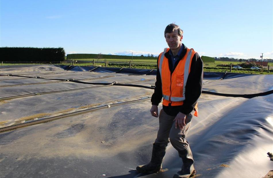 John Scandrett walks on the effluent pond where methane gas is being collected.