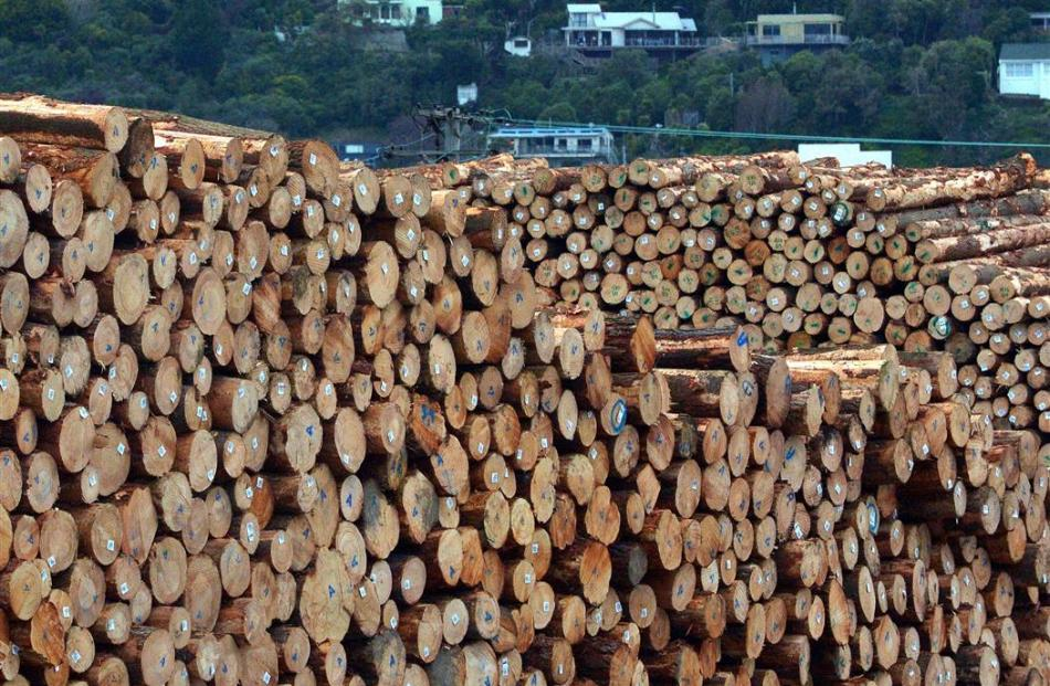 Logs have defied expectations of a fall in prices. Photo by Gerard O'Brien.