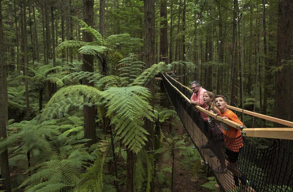 A family gazes at the surroundings on the Redwoods Treewalk in Rotorua. PHOTO: SUPPLIED