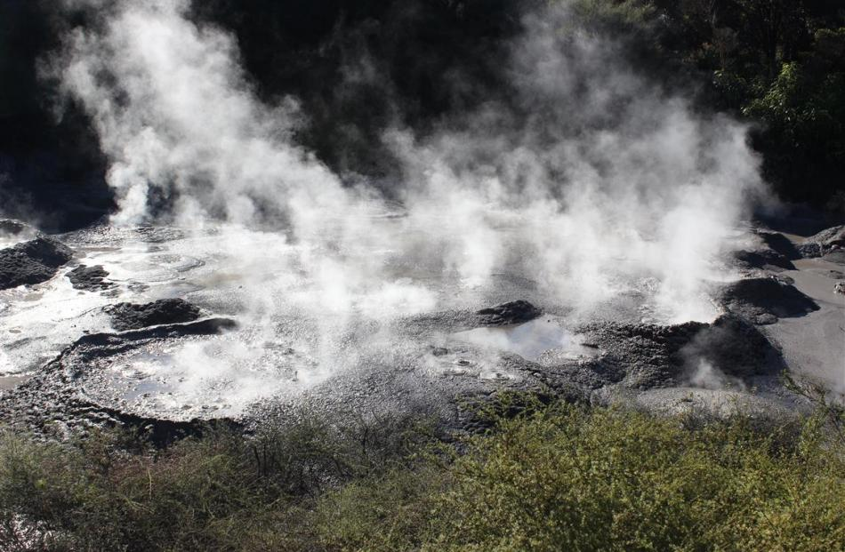 Bubbling mud at the Te Puia geothermal site. PHOTO: JONO EDWARDS