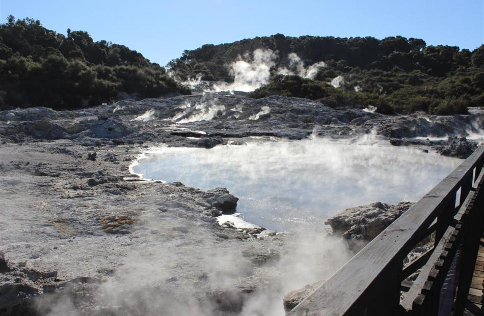 The steaming pools at the Hell's Gate geothermal site. PHOTO: JONO EDWARDS