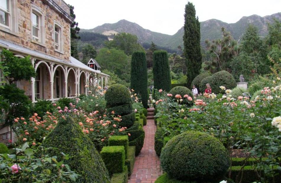 Straight lines in Ohinetahi's rose garden are softened by rounded topiary shapes. The steps lead...