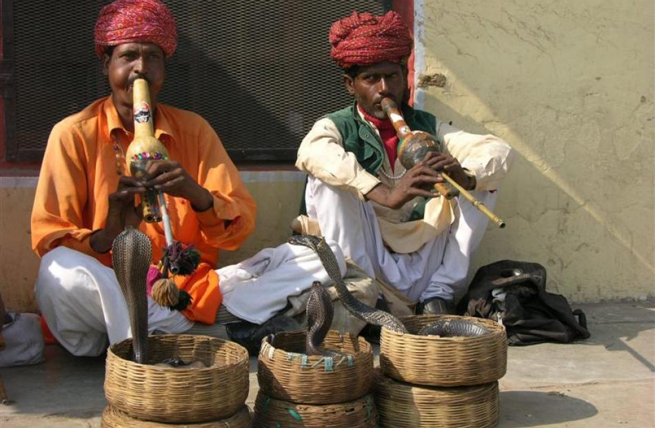 Snake charmers in Jaipur. Photo by Charmain Smith