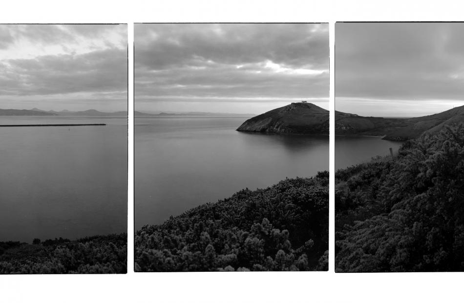 Mark Adam's Pilots Bay Taiaroa Head , a silver bromide photograph enlarged from 10x8 inch Kodak...