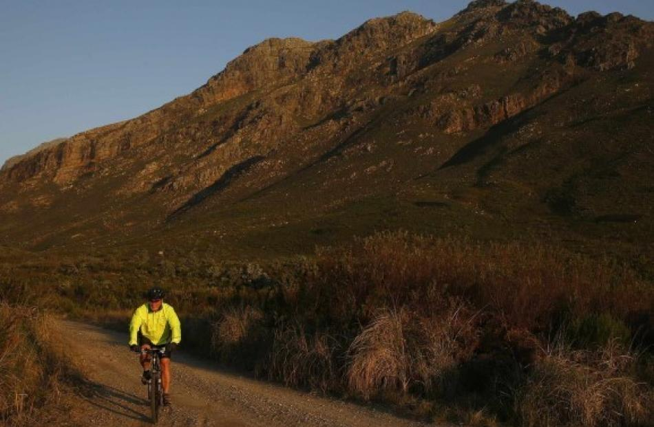 A mountain biker follows a trail in the Jonkershoek valley near Stellenbosch in the Cape...