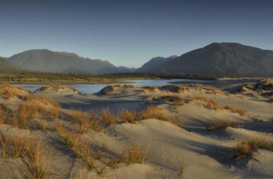 A newly-formed charitable trust will work with the Department of Conservation to restore native...