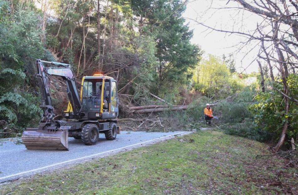 A Queenstown Lakes District Council contractor works to clear fallen trees from the Glenorchy...