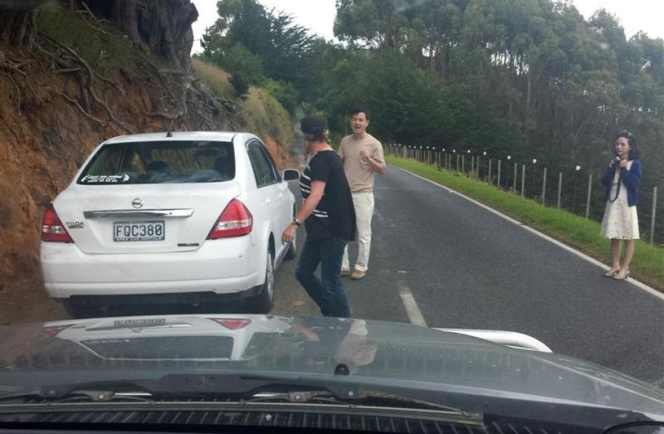 A rental car stopped in Highcliff Rd, on Otago Peninsula. Photo supplied.
