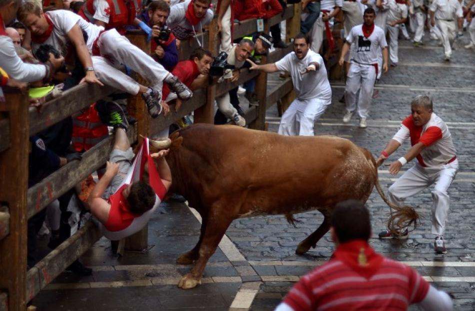 A runner is gored by a Miura fighting bull at Estafeta corner during the eighth running of the...