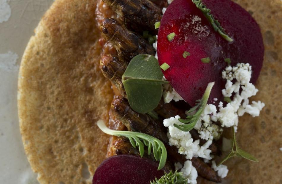An appetising appetiser? This grasshopper dish is an example of fine dining from the Nordic Food...