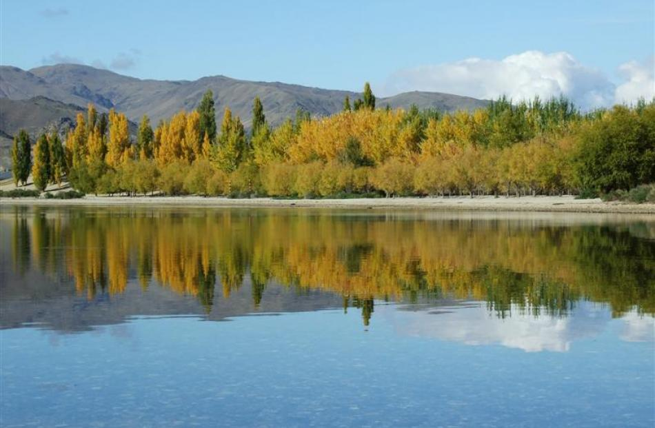 Autumn colours on display near Cromwell are reflected in the water of Lake Dunstan. Photo by...