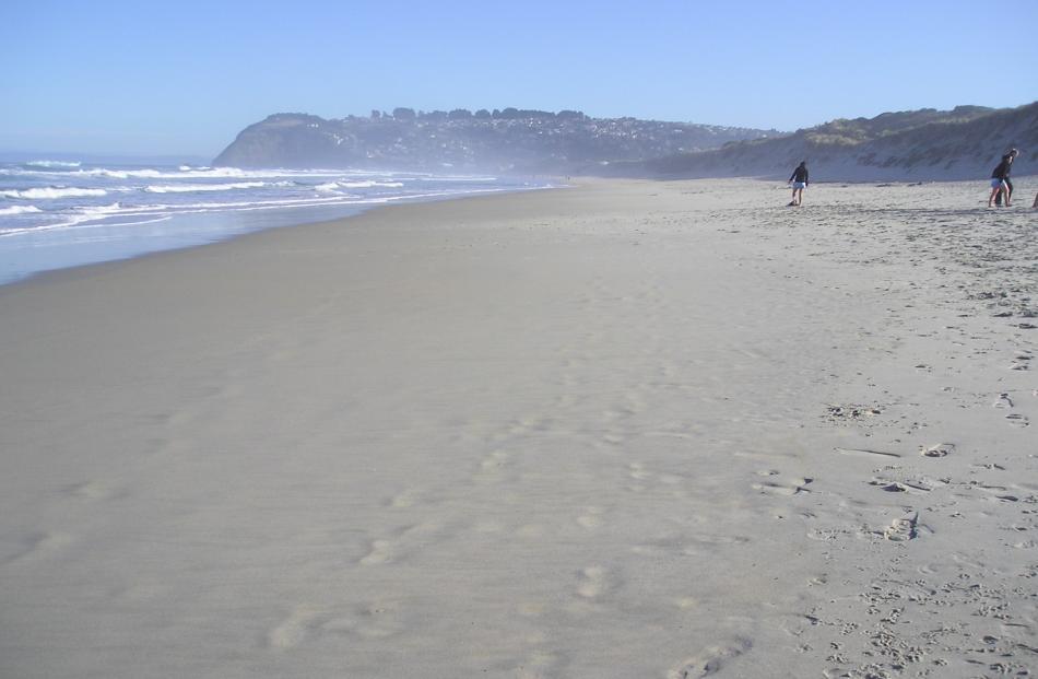 beach_2010_004_jpg_4f1df0fc03.jpg