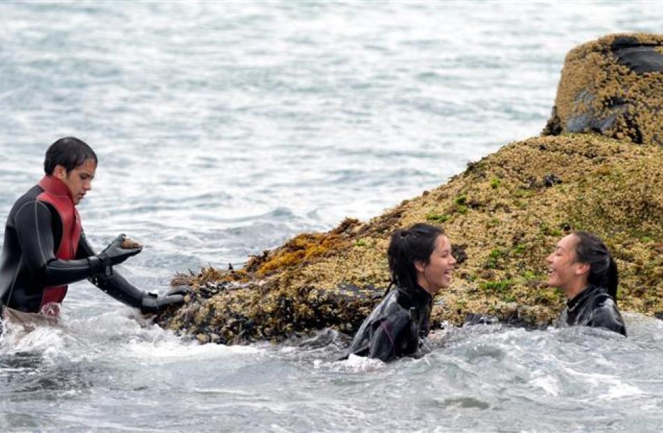 Cousins Barlow Anderson (16), Waiura Anderson (15) and Hinamoki Rewi (14) search for shellfish...