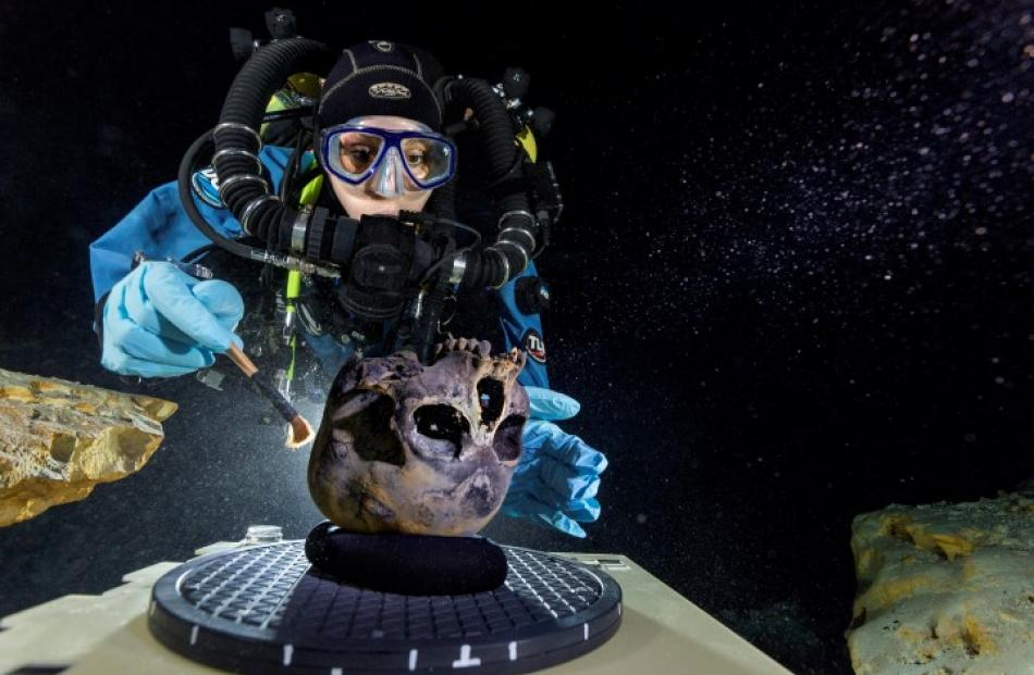 Diver Susan Bird works at the bottom of the Hoyo Negro, a large dome-shaped underwater cave on...