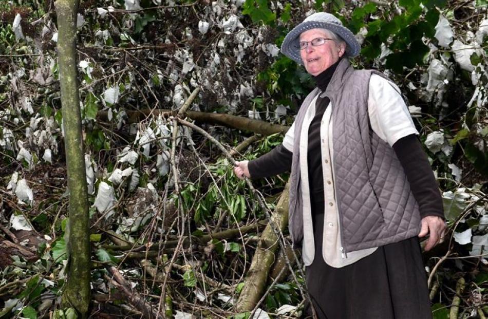 Dunedin resident Pat Petersen is upset by recent vegetation cutting near Jubilee Park. Photo by...