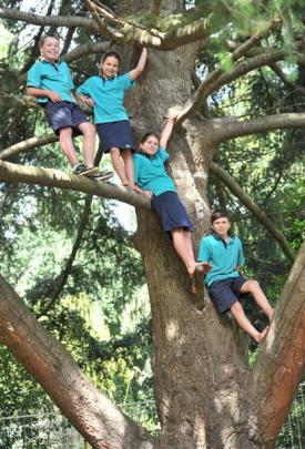 East Taieri School pupils (from left) Devin Colston (10), Jemma Wilson (9), Grace Cotter (10) and...