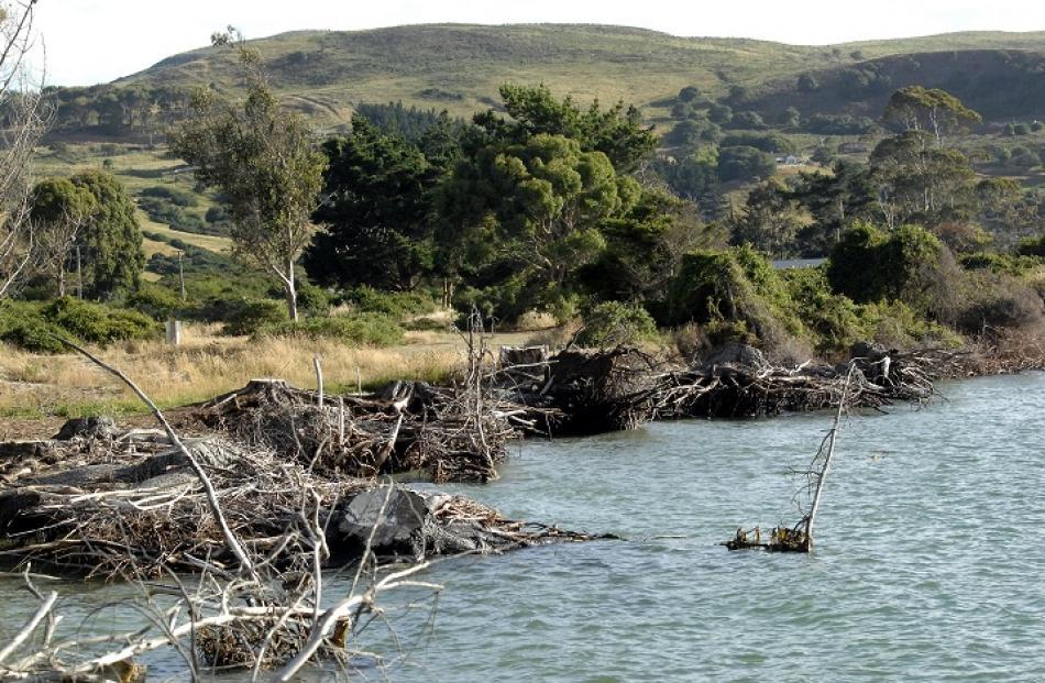 Erosion at Harington Point. Photos Linda Robertson
