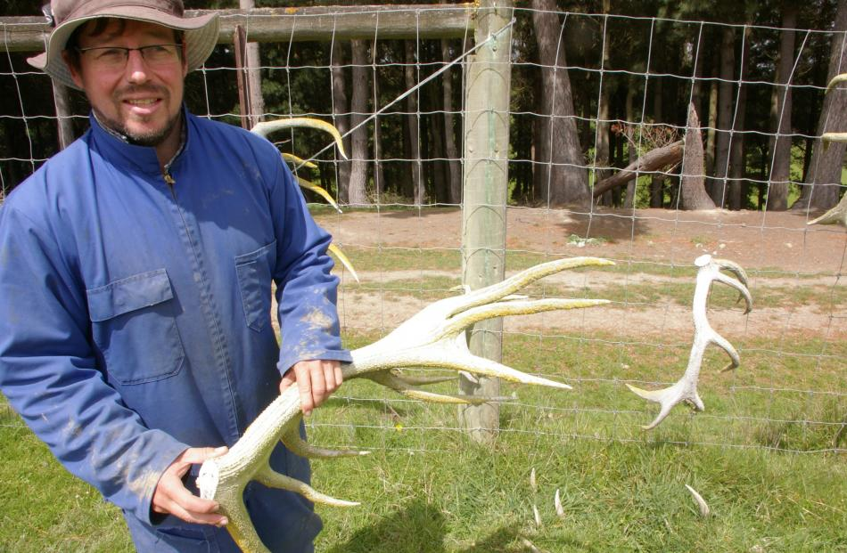 Former Radio New Zealand economics correspondent Nigel Stirling has deer velvet and sheep on his...