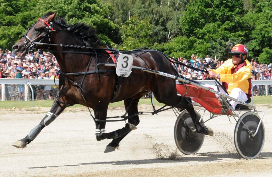 Franco Ledger wins the $30,000 Central Otago Cup at Omakau in January last year. Photo by Tayler...