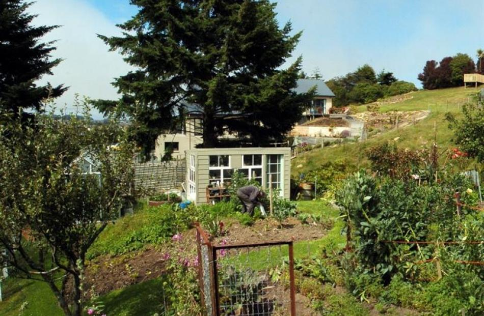 Kieran and Dorothy Hurring have established a productive garden on their steep but sheltered...