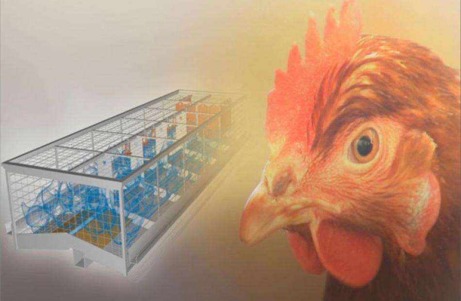 Image by Mainland Poultry.