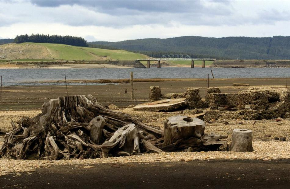 In 2005, a tree stump and a crumbling hearth, part of the old Waipori township, lie uncovered by...