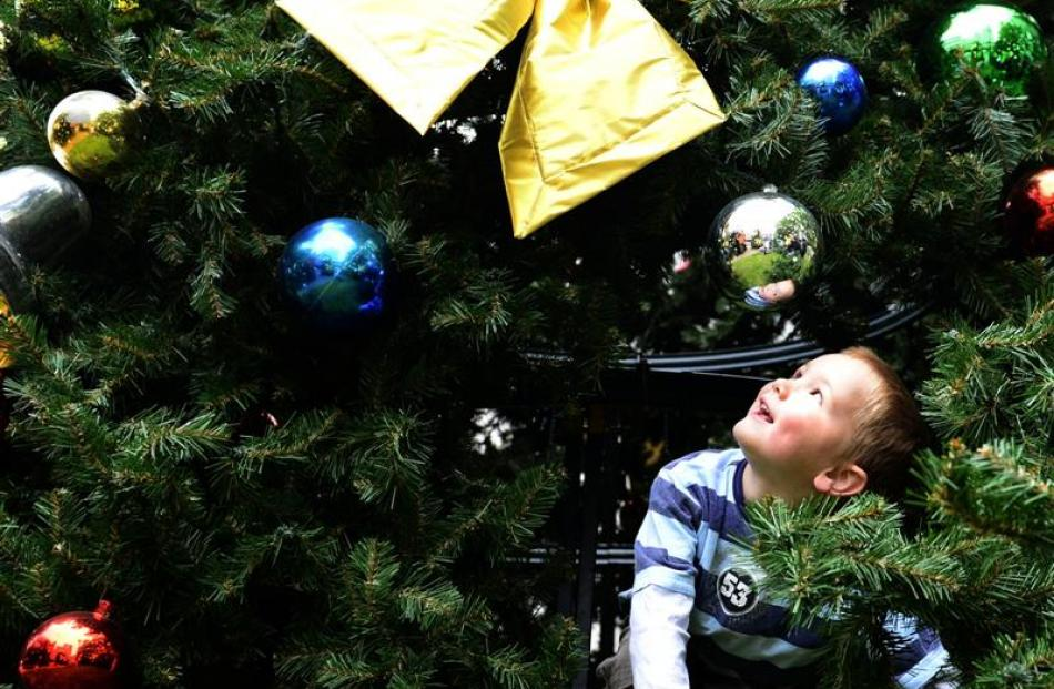 Jacob Smeaton (4), of Dunedin, investigates the Christmas tree in the lower Octagon yesterday....