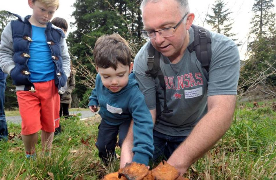 Jarn Hollows (8, left), Jack Orlovich (3) and Dr David Orlovich dig up some fungi during the...