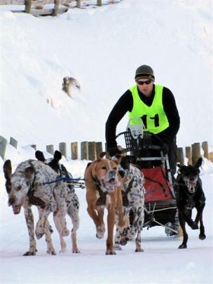 Julian Johnston, of North Canterbury, and his six-dog team of German pointers finish an 8km race....