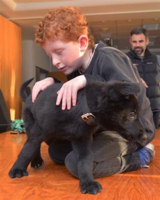 Kohl Goodfellow (7), of Dunedin, meets his namesake, K9 Kohl, at the Dunedin Central Police...