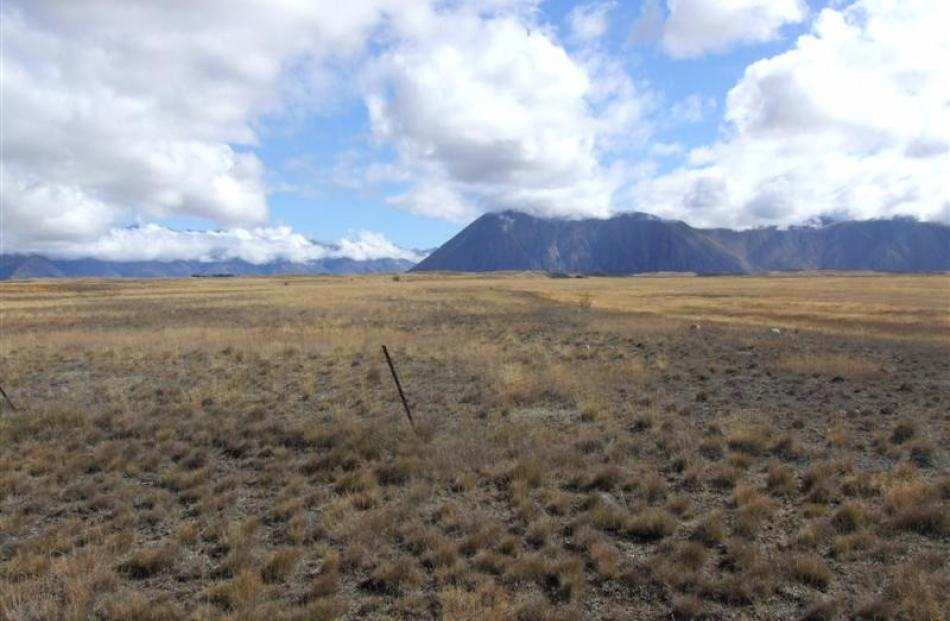 Land earmarked for irrigation and dairy development at Ohau Downs near Omarama.