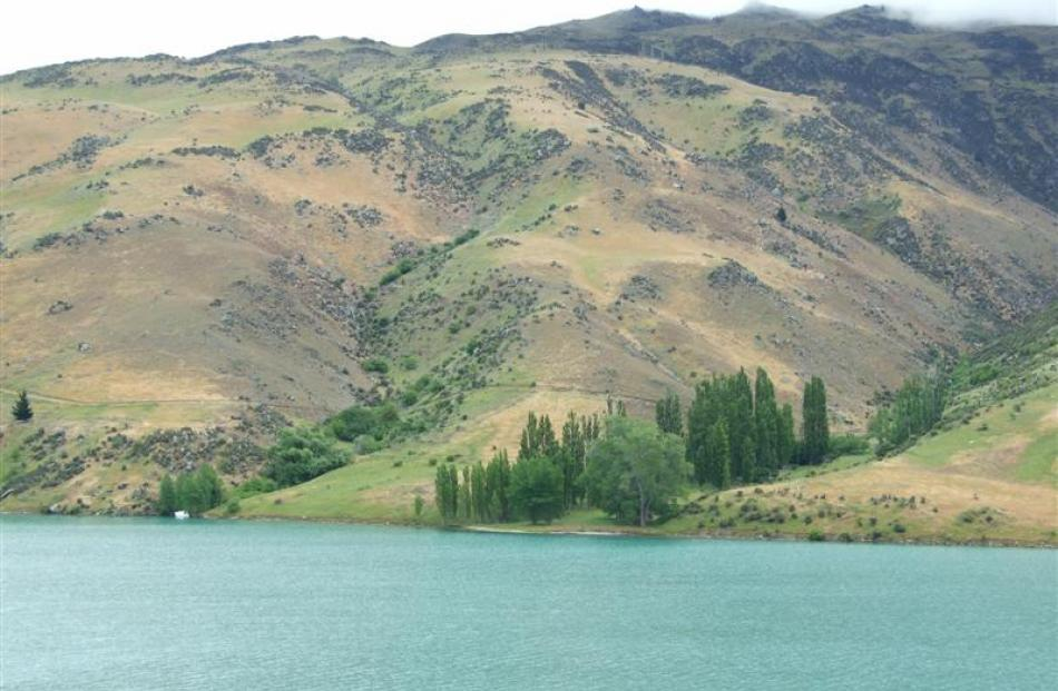 Land Information New Zealand is considering a proposal to use part of the shores of Lake Dunstan,...