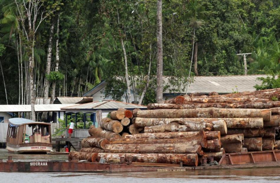 Logs cut from the Amazon rainforest are transported by barge to a shipping port, just off Marajo...