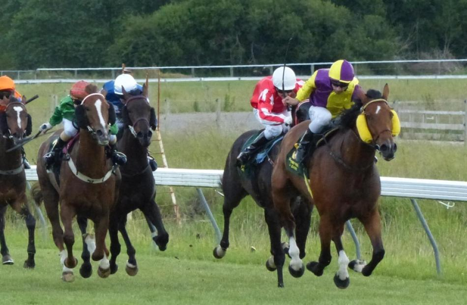 Make It Happen pulls away from her rivals in a 1250m maiden race at Waikouaiti yesterday. Photo...