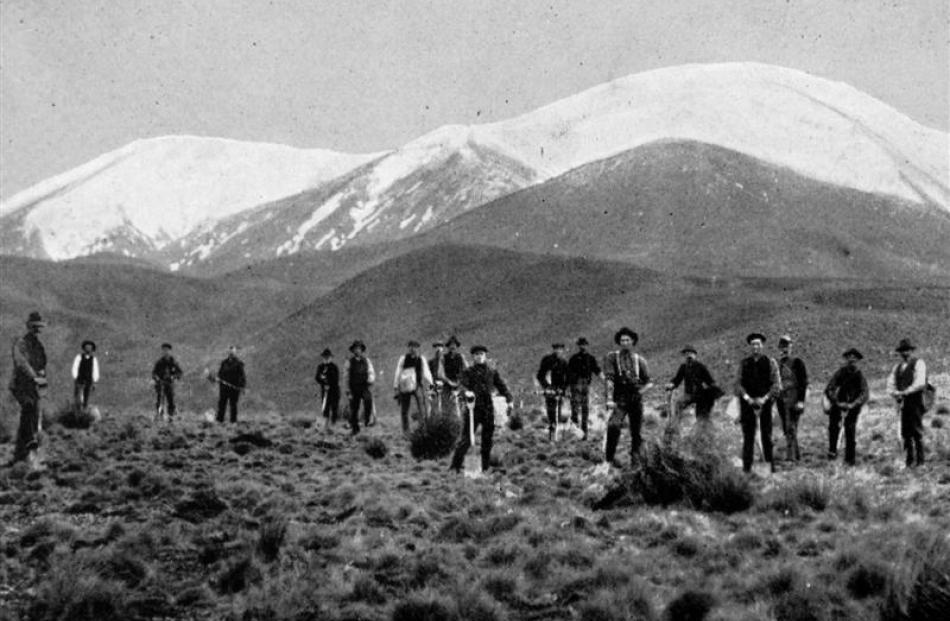 Men employed planting trees on the Eweburn reservoir site at Naseby.- Otago Witness, 19.2.1913....