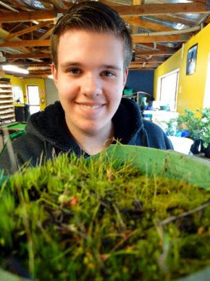 Youthgrow Worker Hunter Miller 17 Prepares Another Plant For