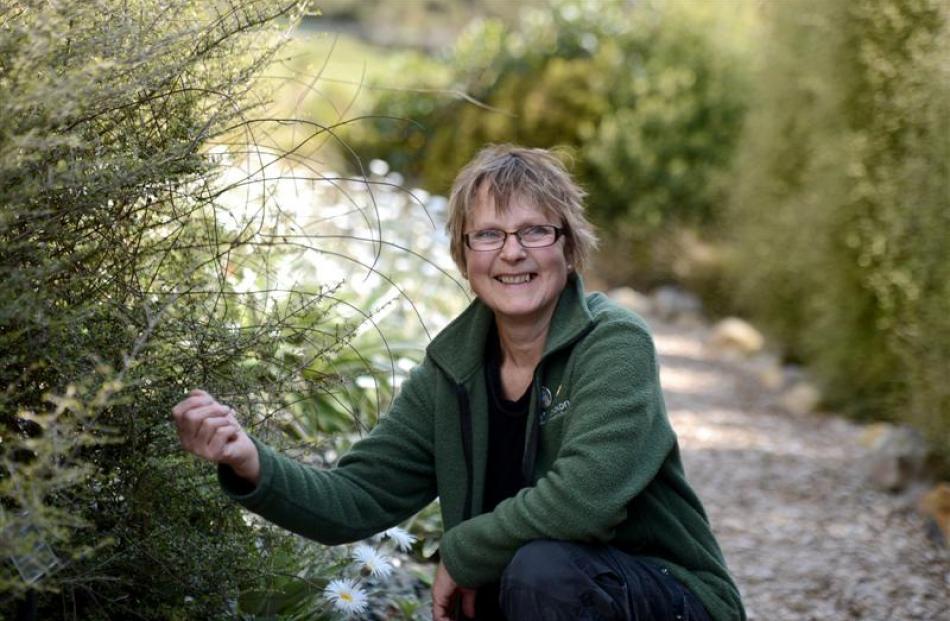 Orokonui Ecosanctuary volunteer Valerie Fay, of Waitati, in the Otago rare plants garden at the...
