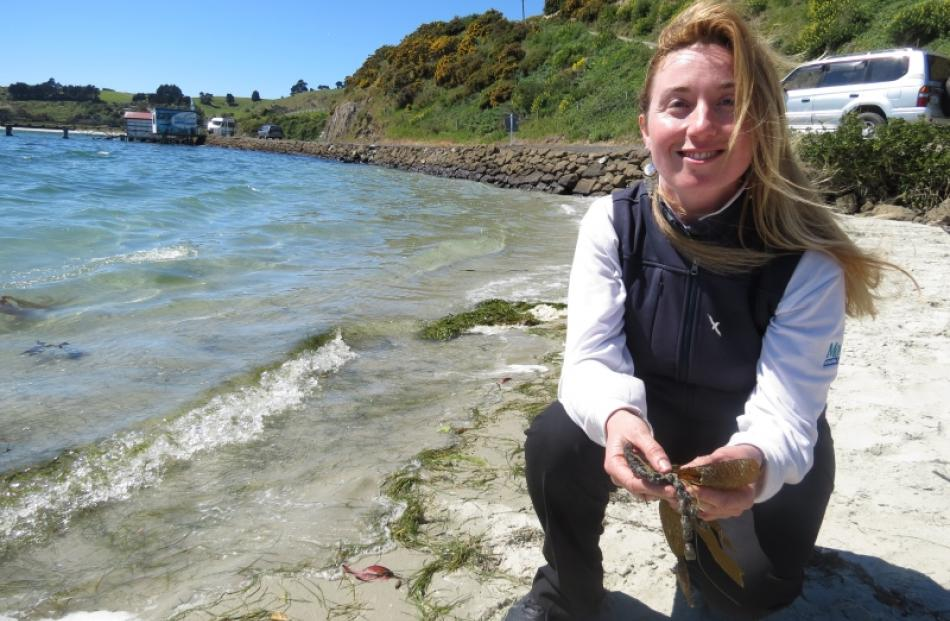 Our Seas Our Future co-ordinator Suzanne Burns will be leading the group's new Adopt a Coast...