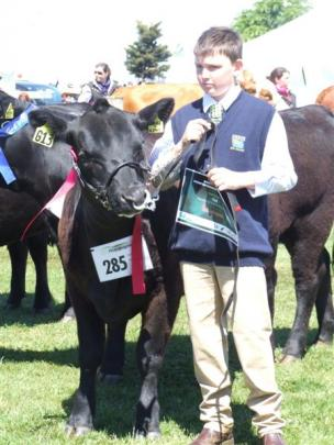 Patrick Forbes (12) leads an Angus heifer for North Otago Angus breeders Neil and Rose Sanderson....
