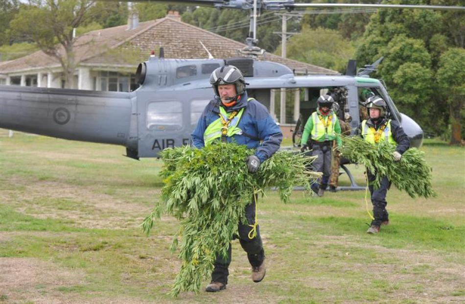 Police officers unload cannabis plants, discovered during Operation Jasmin, from a Royal New...