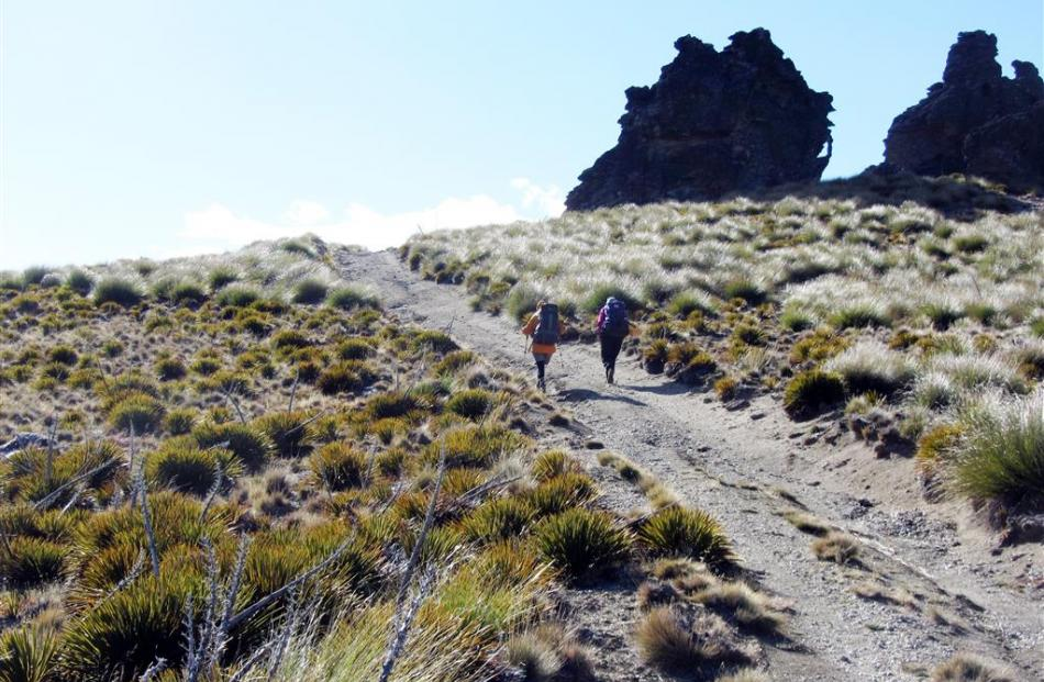 rampers head across the tops on the Cromwell-Cardrona track. Photos by Upper Clutha Tramping Club.