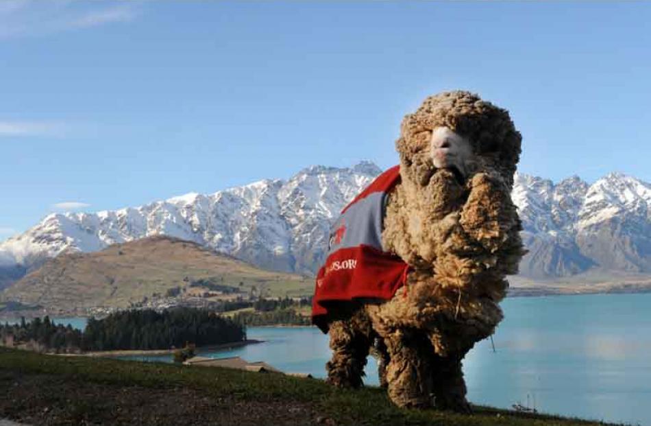 Shrek captured the hearts of New Zealanders. Photos by Stephen Jaquiery.