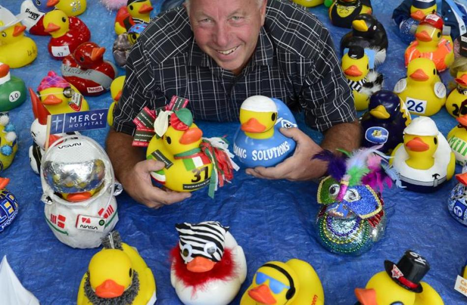 Rotary Club of Dunedin East member Barry Johnston lies among decorated rubber ducks. Photo by...
