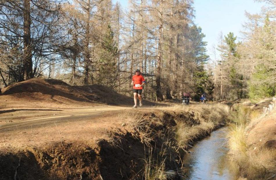 Runners in the 2010 race follow the water race through the Naseby Forest. Photo by Gerard O'Brien.