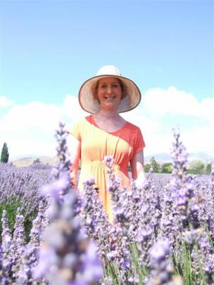 Sam Laugesen in her lavender patch at Westmere Lavender, Kurow. Photos by Sally Rae.
